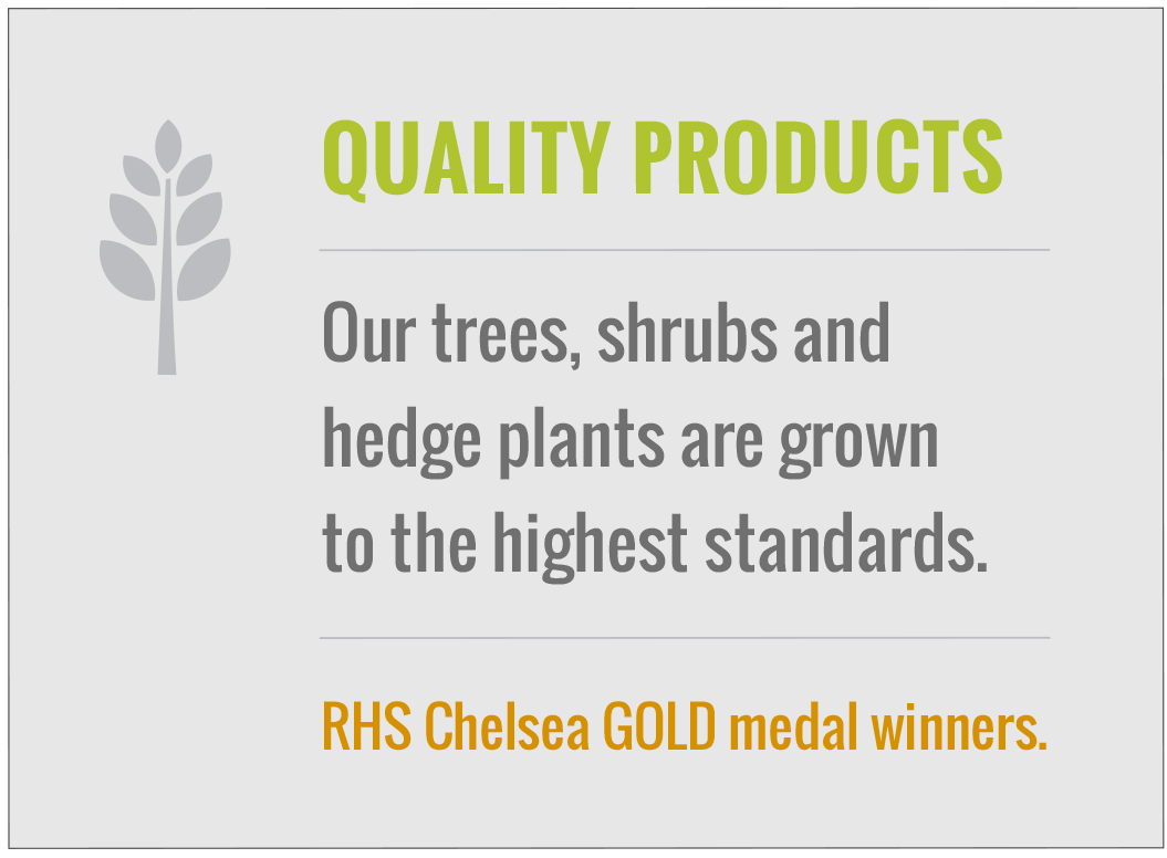 Our trees, shrubs and heding plants are grown to the highest standards
